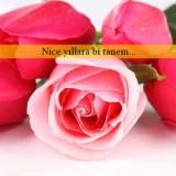 Romantik Doğum Günü Mesajları
