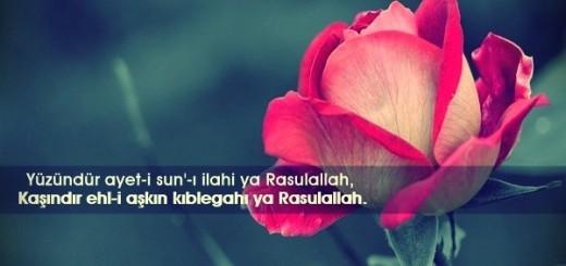 Hz. Muhammed'e Yazılan Güzel Sözler