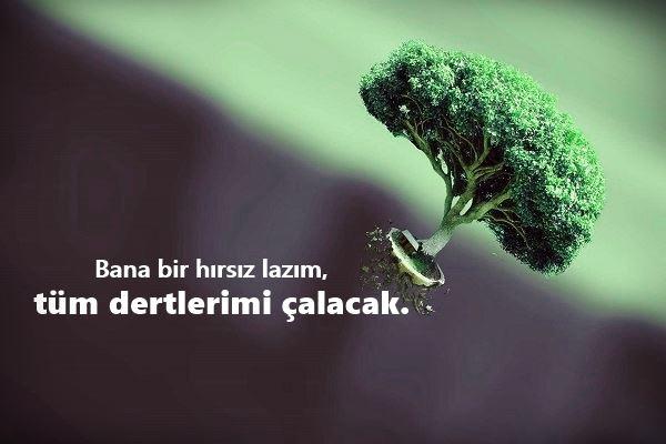 Lucky Human Review Go Azeri Derin Menali Sozler Azerice