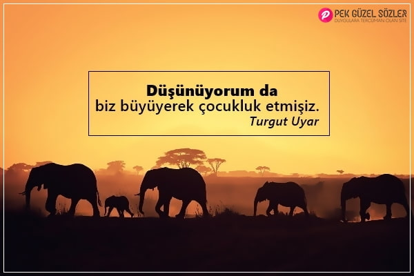 Turgut Uyar Sözleri