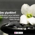 Çiçeklerle İlgili Güzel Sözler