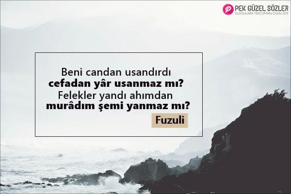 Fuzuli Sözleri